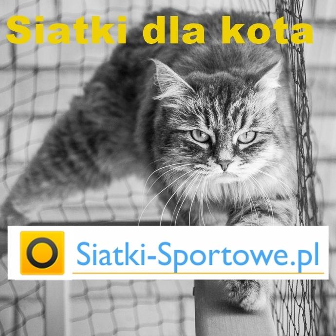Siatki do zabezpieczeń kota